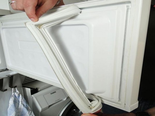 Kühlschrankmagnetdichtung Masura gesteckt Groß B-SD